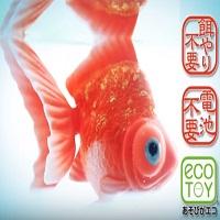 カラクリ金魚はエサも電池いらない琉金&出目金